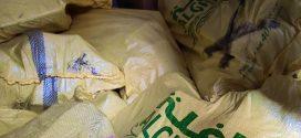 طنجة.. فتح بحث قضائي بشأن شبكة إجرامية تنشط في التهريب الدولي للمخدرات